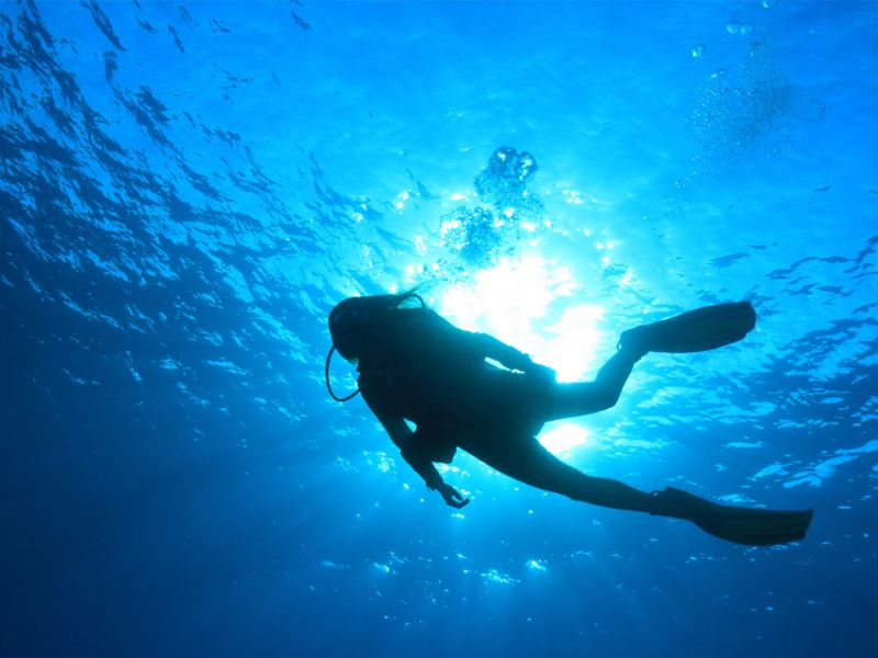 Mary Scuba Diving